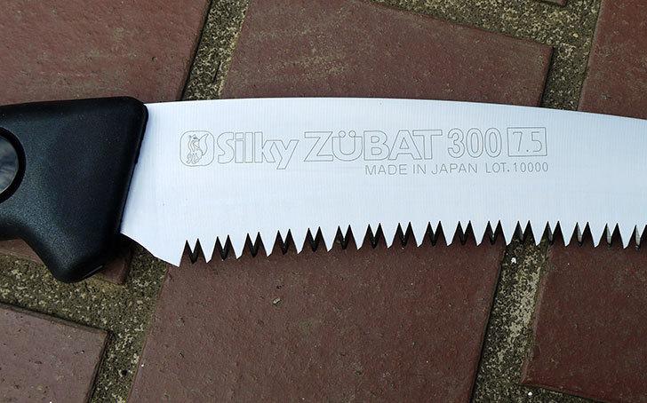 シルキー-剪定用鋸-ズバット-300mm-本体-270-30を買った9.jpg