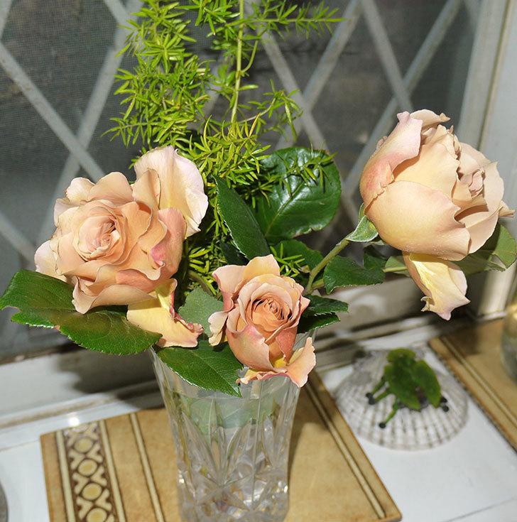 ジュリア(ツルバラ)を切り花にした。2016年-1.jpg