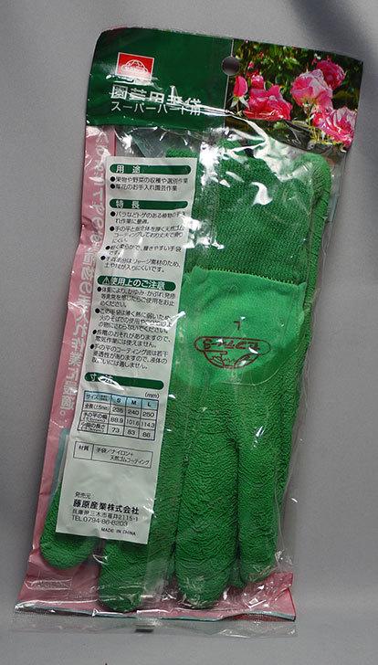 セフティー3-園芸用手袋-スーパーハード用-Lを買った3.jpg