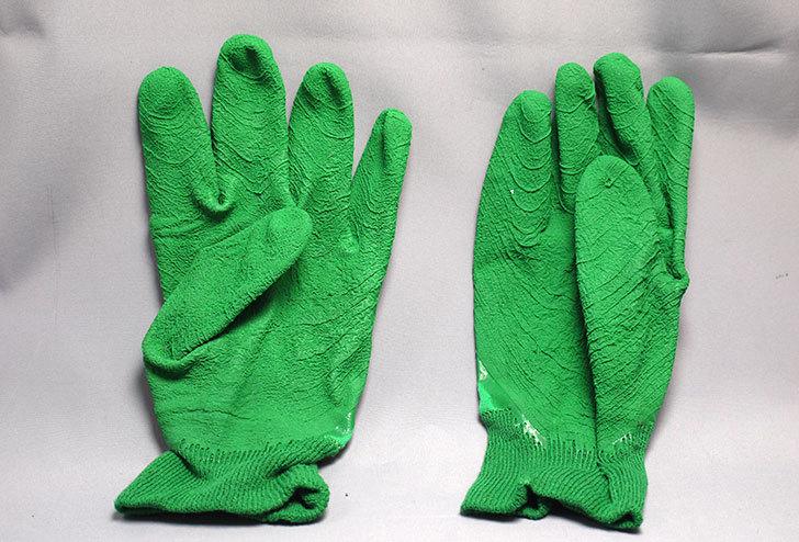 セフティー3-園芸用手袋-スーパーハード用-Lを買った4.jpg