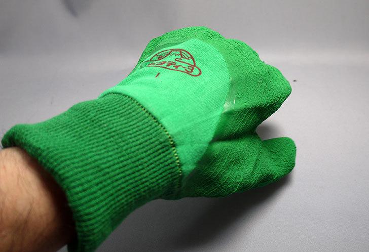 セフティー3-園芸用手袋-スーパーハード用-Lを買った8.jpg