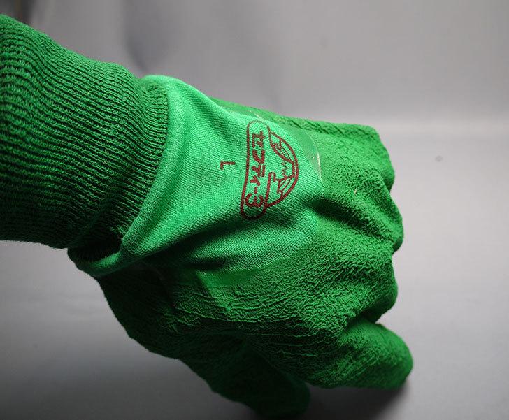 セフティー3-園芸用手袋-スーパーハード用-Lを買った9.jpg