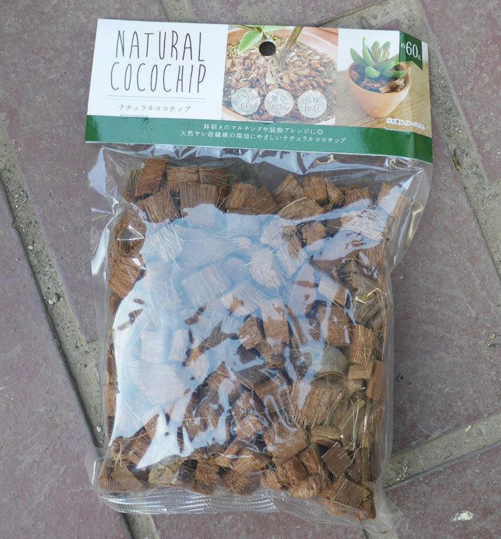 セリアでナチュラルココチップ約60gを買って来た1.jpg