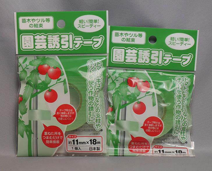 セリアで園芸誘引テープ-11mm×18mを2個買ってきた1.jpg