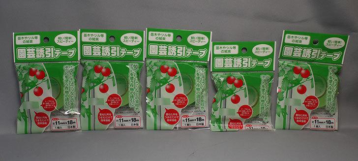 セリアで園芸誘引テープ-11mm×18mを5個買ってきた1.jpg