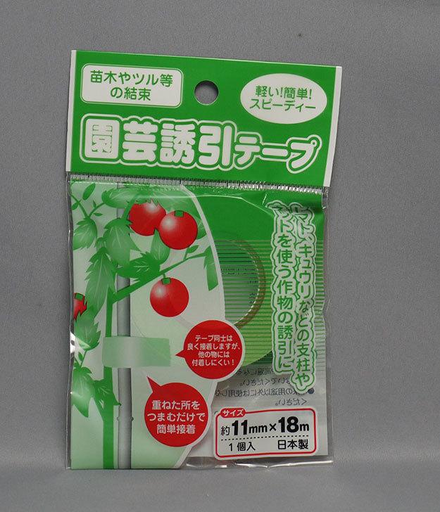 セリアで園芸誘引テープ-11mm×18mを5個買ってきた2.jpg