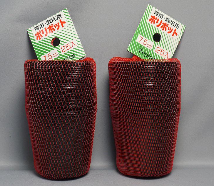 ゼフィルス-育苗・栽培用ポリポット-7.5cm-25入をホームズで2個買って来た1.jpg