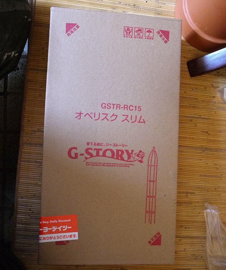 タカショー-GSTR--RC15-G-story-オベリスクスリムをケイヨーデイツーで買って来た1.jpg