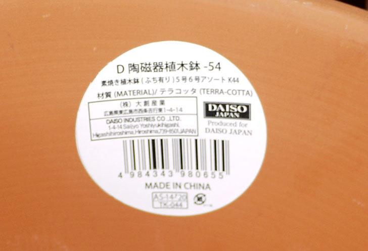 ダイソーでD-陶磁器植木鉢-54を5個買って来た8.jpg