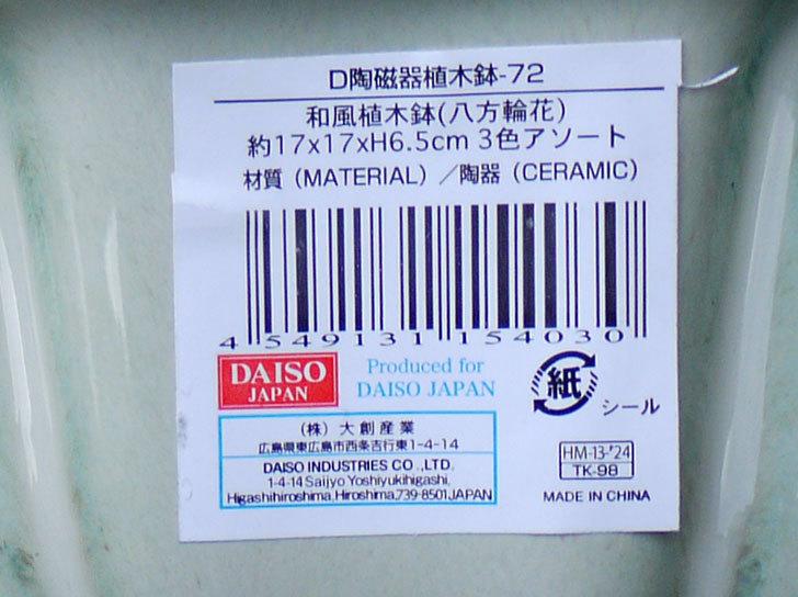 ダイソーでD陶磁器植木鉢-72-和風植木鉢(八方輪花)を買って来た4.jpg