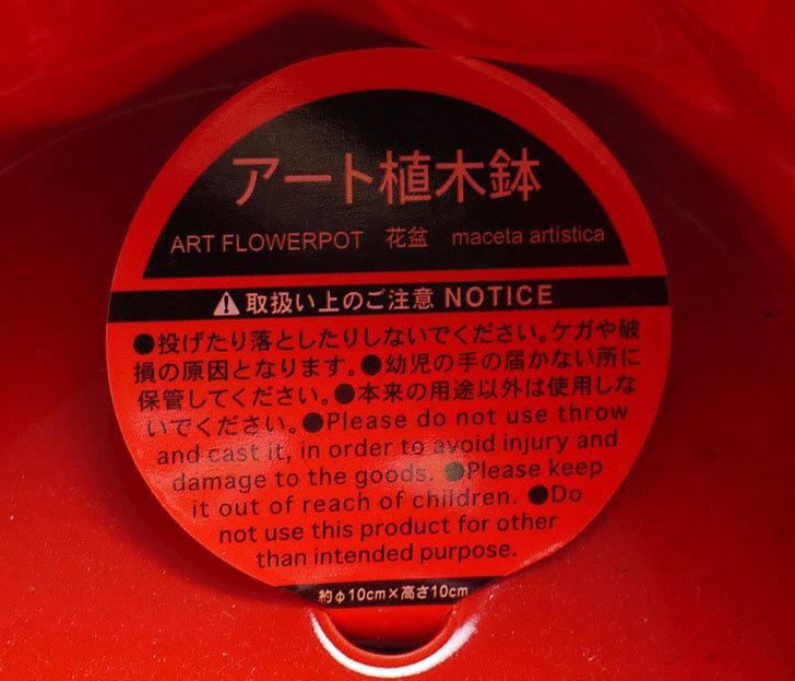 ダイソーでアート植木鉢-洋陶器植木鉢36を2個買って来た7.jpg