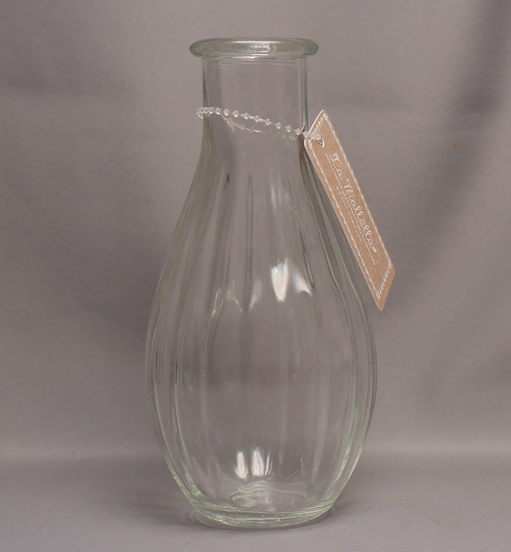ダイソーでガラスベース(カフェ①)G-097-インテリア花瓶-NO1を買って来た1.jpg