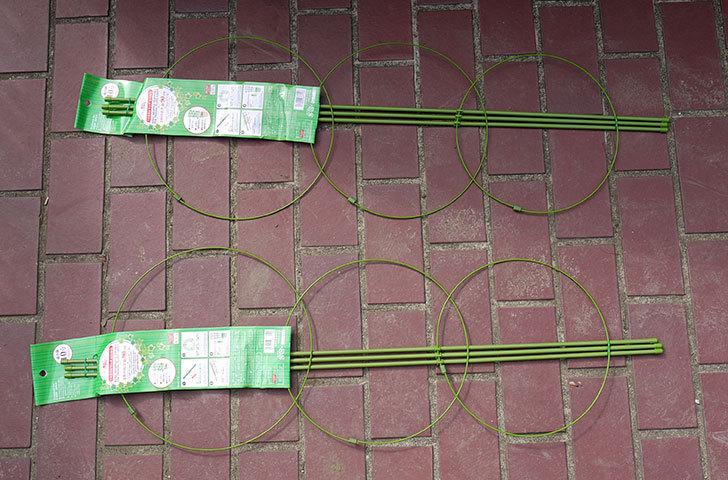 ダイソーでツル巻き用リング支柱緑色10号を2個買って来た1.jpg