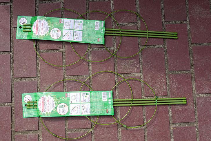ダイソーでツル巻き用リング支柱緑色6号を2個買って来た2.jpg