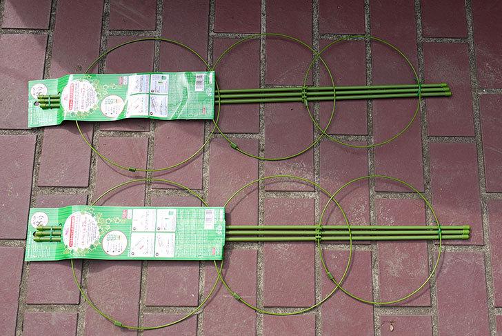 ダイソーでツル巻き用リング支柱緑色8号を2個買って来た1.jpg