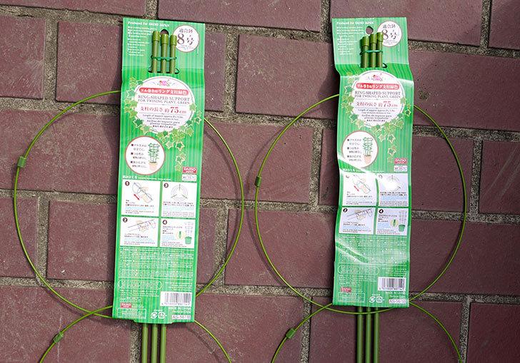 ダイソーでツル巻き用リング支柱緑色8号を2個買って来た2.jpg