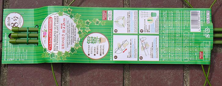 ダイソーでツル巻き用リング支柱緑色8号を2個買って来た3.jpg