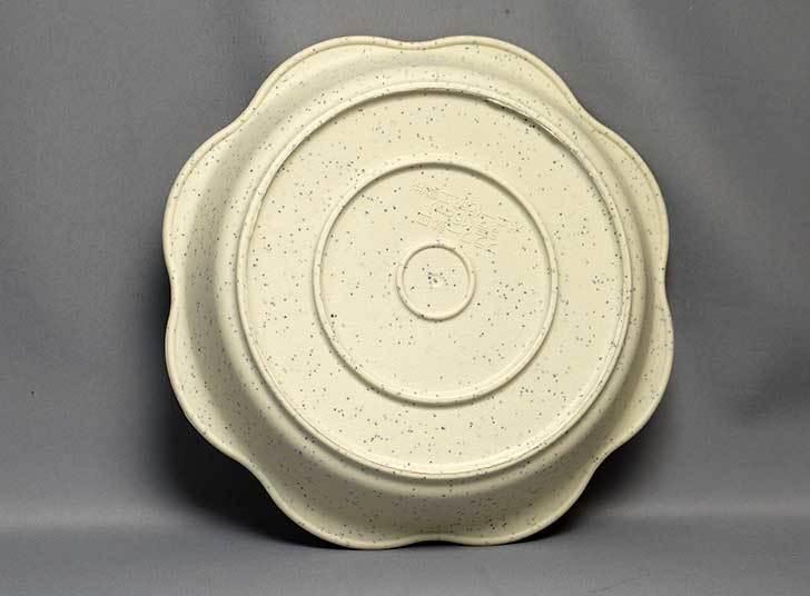 ダイソーでフラワー鉢皿-2枚入-5号を買って来た4.jpg