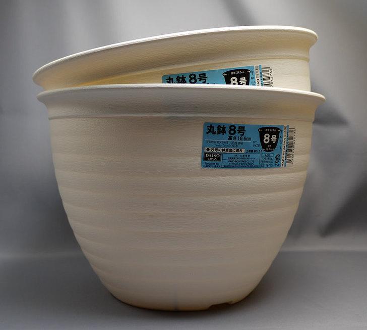 ダイソーで丸鉢8号を2個買って来た1.jpg
