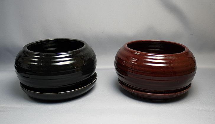 ダイソーで和モダン植木鉢-陶器植木鉢K2の黒と茶を買って来た1.jpg