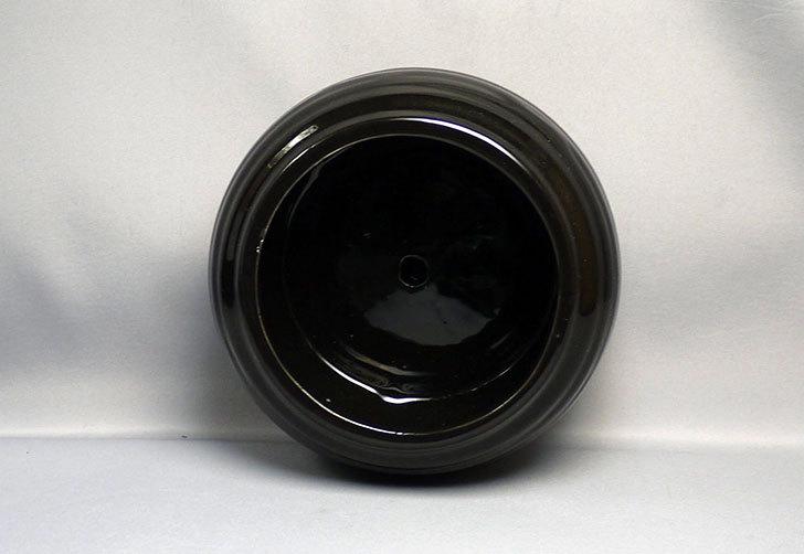 ダイソーで和モダン植木鉢-陶器植木鉢K2の黒と茶を買って来た6.jpg