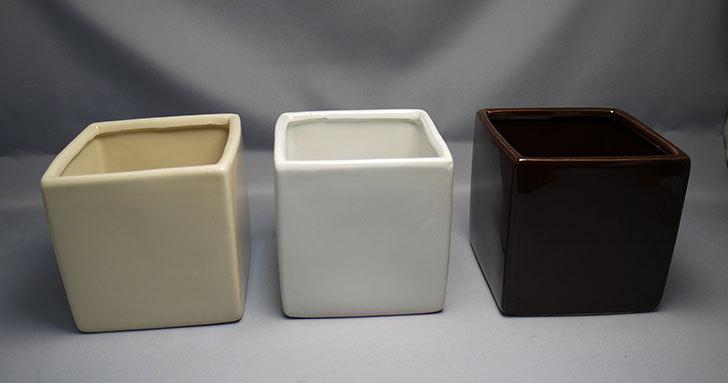 ダイソーで四角植木鉢-方形花盆-洋陶器植木鉢40を3個買って来た1.jpg