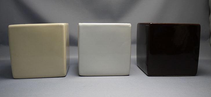 ダイソーで四角植木鉢-方形花盆-洋陶器植木鉢40を3個買って来た2.jpg