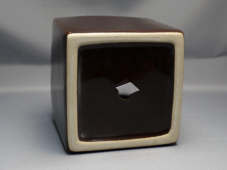 ダイソーで四角植木鉢-方形花盆-洋陶器植木鉢40を3個買って来た5.jpg