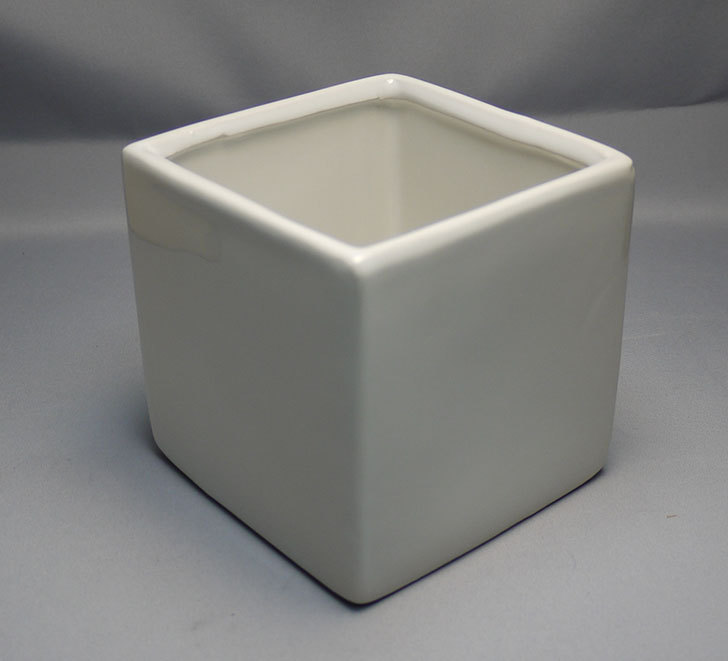 ダイソーで四角植木鉢-方形花盆-洋陶器植木鉢40を3個買って来た8.jpg