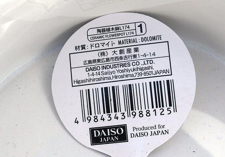 ダイソーで柄違いのモダンレリーフ植木鉢-花盛5.jpg