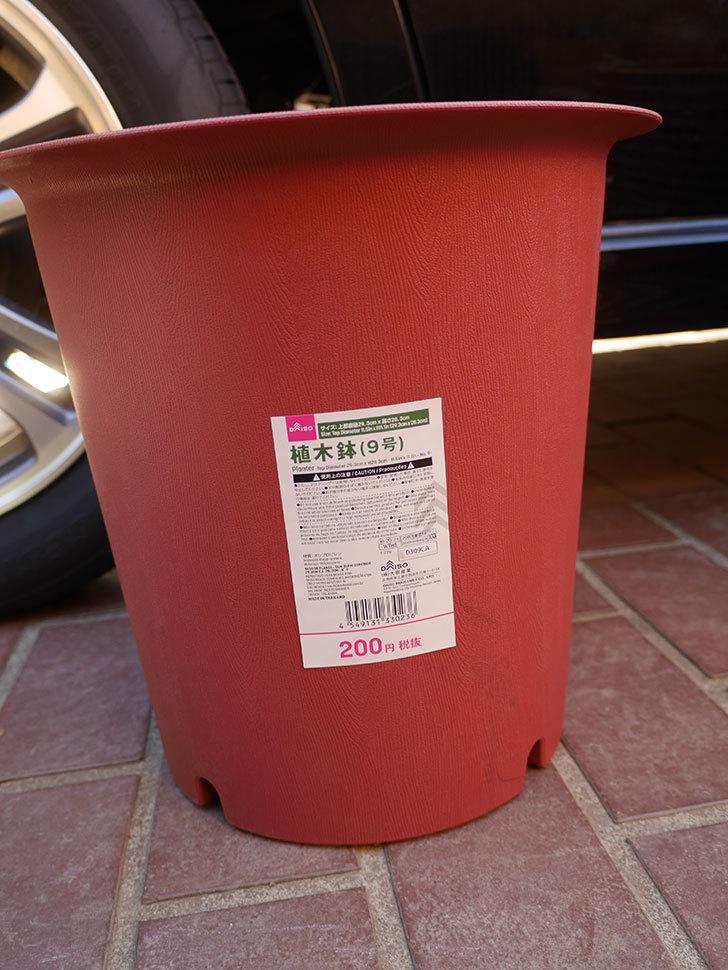 ダイソーで植木鉢9号を買って来た。2021年-001.jpg