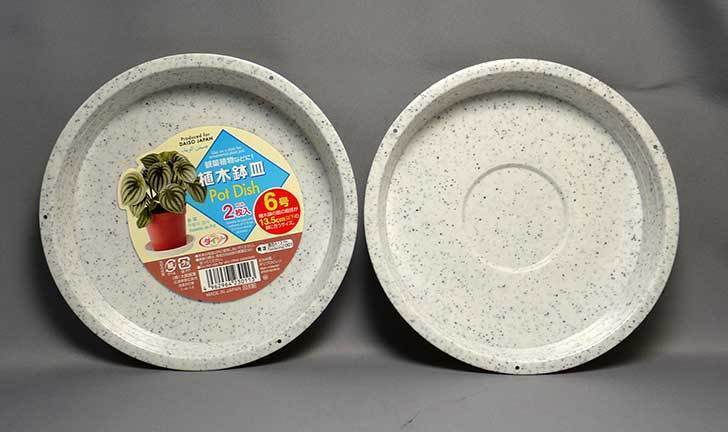 ダイソーで植木鉢皿-Pot-Dish-2枚入り6号を買って来た1.jpg