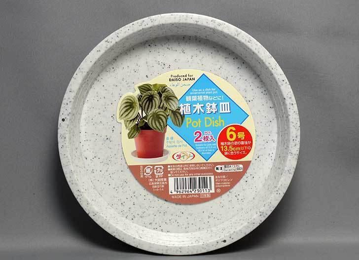 ダイソーで植木鉢皿-Pot-Dish-2枚入り6号を買って来た2.jpg