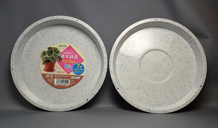 ダイソーで植木鉢皿-Pot-Dish-2枚入り7号を買って来た1.jpg