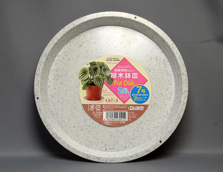 ダイソーで植木鉢皿-Pot-Dish-2枚入り7号を買って来た3.jpg