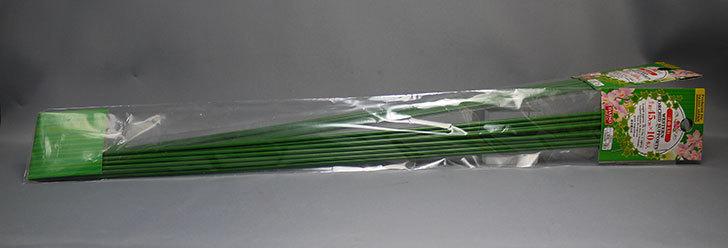 ダイソーで洋蘭支柱-約45cm×10本入と約75cm×10本入を2個ずつ買って来た1.jpg