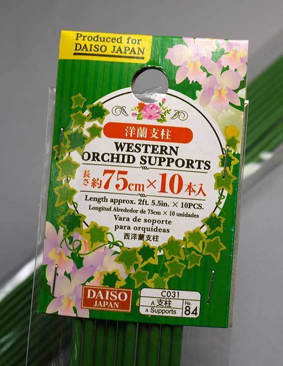 ダイソーで洋蘭支柱-約45cm×10本入と約75cm×10本入を2個ずつ買って来た6.jpg
