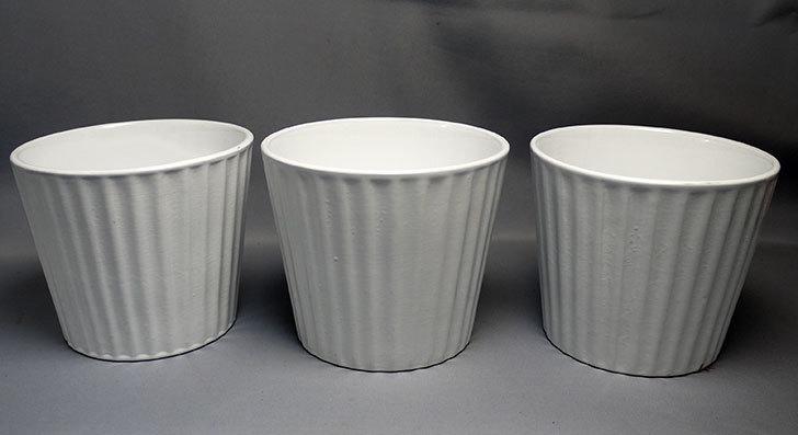 ダイソーで素焼き植木鉢(ストライプ)を3個買って来た1.jpg