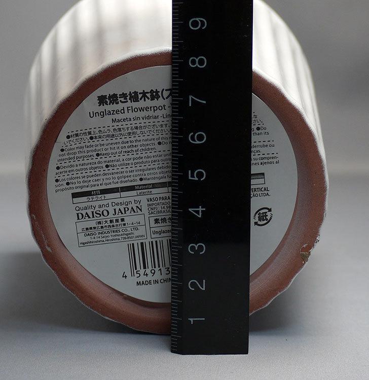 ダイソーで素焼き植木鉢(ストライプ)を3個買って来た8.jpg