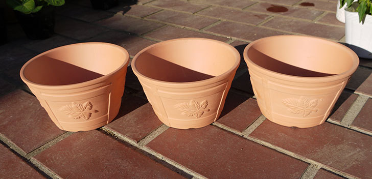 ダイソーで素焼き植木鉢K44を3個買って来た2.jpg