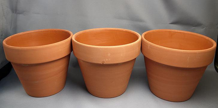 ダイソーで素焼植木鉢-約17cmを3個買って来た2.jpg