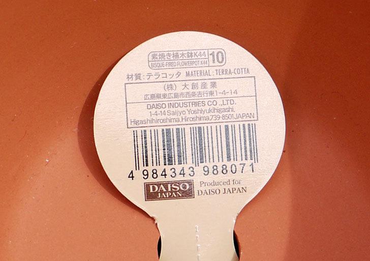 ダイソーで素焼植木鉢C-素材花盆-素焼き植木鉢K44を2個買って来た5.jpg