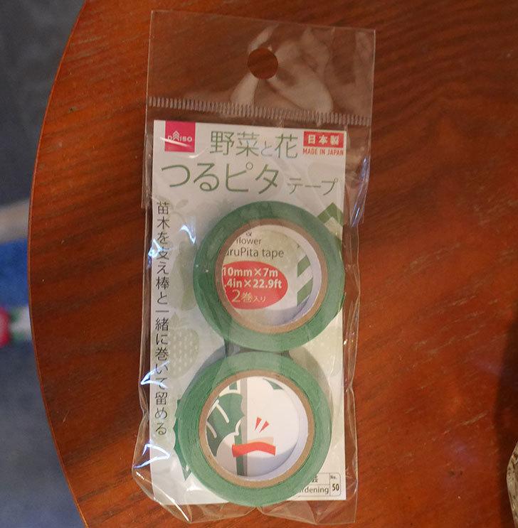 ダイソーで野菜と花つるピタテープ-10mm×7m-2巻入りを買ってきた1.jpg