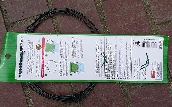 ダイソーで鉢植えの葉ダレ防止用円型支柱-6、7、8号用-高さ28cmを買って来た3.jpg
