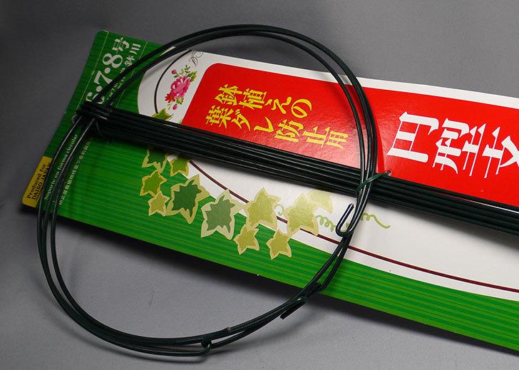 ダイソーで鉢植えの葉ダレ防止用円型支柱-6、7、8号用を買って来た2.jpg