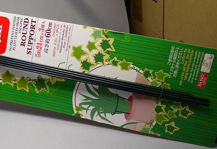 ダイソーで鉢植えの葉ダレ防止用円型支柱-6、7、8号用を買って来た3.jpg