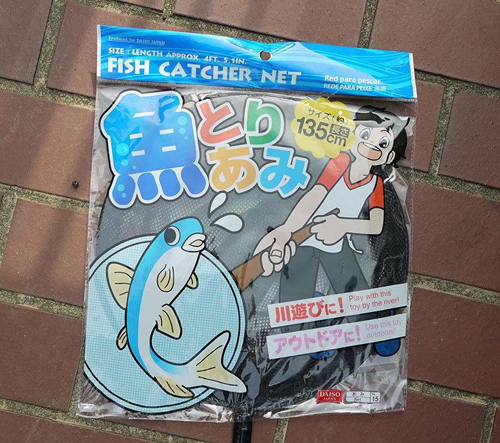 ダイソーで魚とりあみを買って来た1.jpg