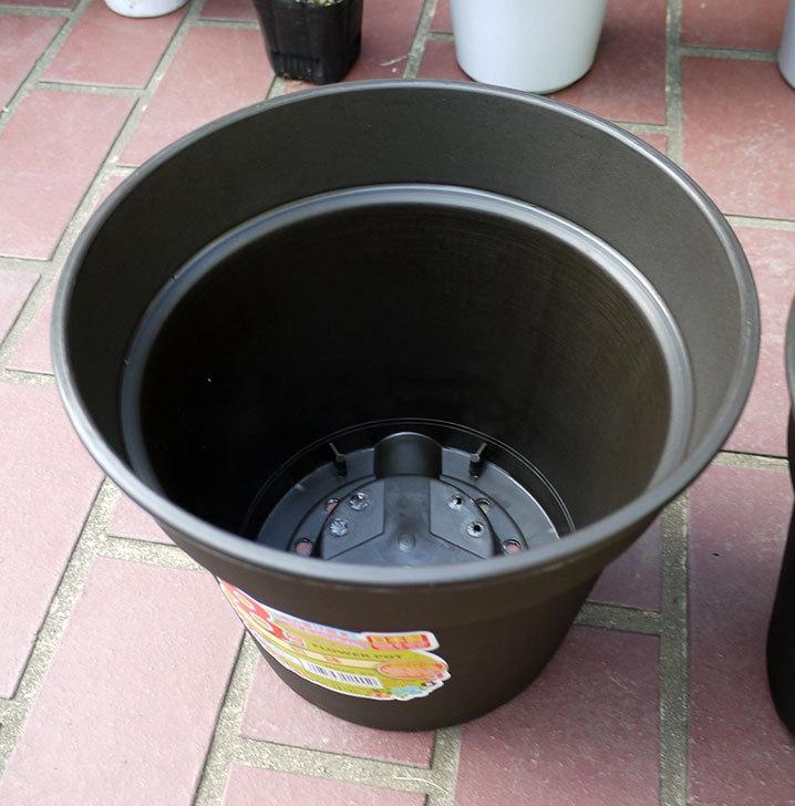 ダイソーでFLOWER-POT-8号-和鉢を買って来た2.jpg