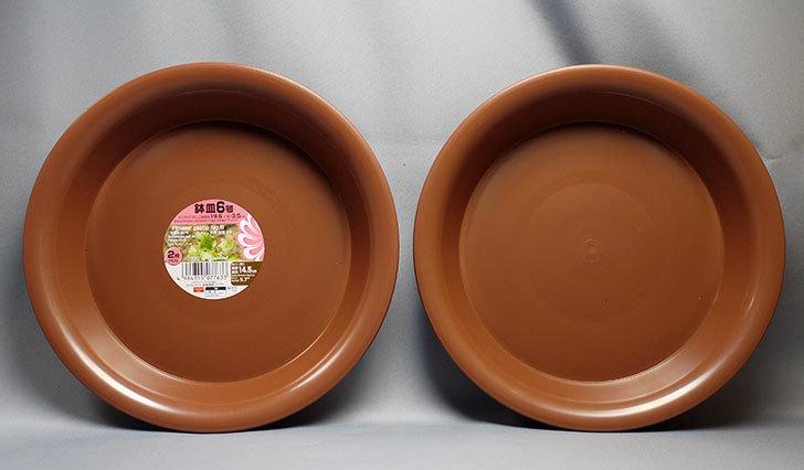 ダイソーでFlower-plate-NO6-鉢皿6号を買って来た1.jpg
