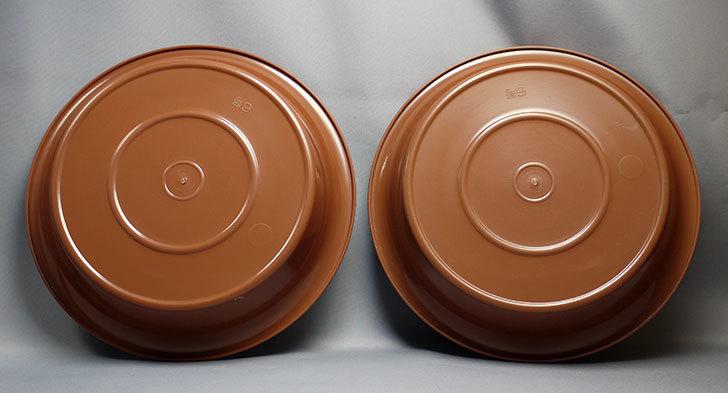 ダイソーでFlower-plate-NO6-鉢皿6号を買って来た3.jpg